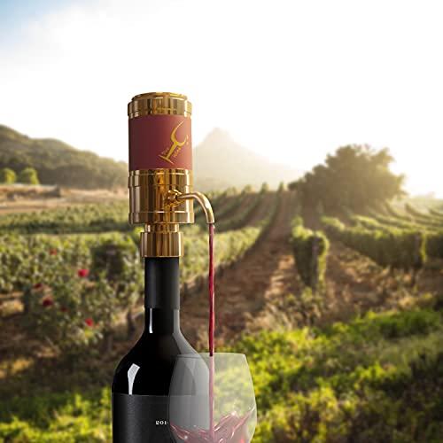 Versatore Elettrico per Vino, Pro Wine Accessori Vino 5 in 1, Versatore Decanter Ossigenatore Aeratore Conservatore -Versatore per aerazione Premium e beccuccio per Decanter- Design Minimale, 2 tubi