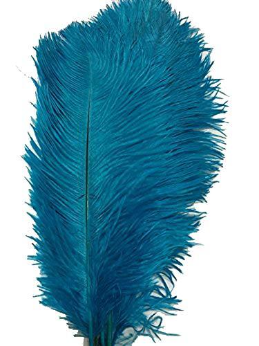 cenfry 100Strauß Federn 30,5–35,6cm Federn für Hochzeit Aufsteller Home Dekoration türkis