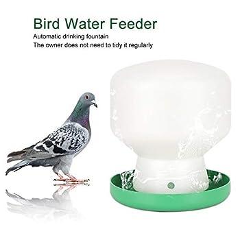 Abreuvoir Automatique Gravité Eau Distributeur d'eau pour Oiseaux Perroquet Buveur Pigeon Abreuvoir Fontaine pour Cage
