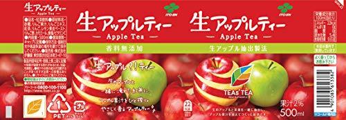 伊藤園TEAS'TEANewAuthentic生アップルティー500ml×24本