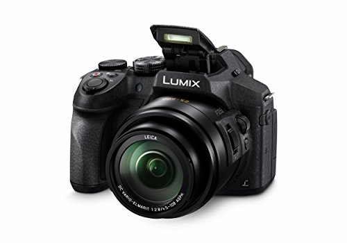 Panasonic LUMIX DMC-FZ300EGK Premium-Bridgekamera (12 Megapixel, 24x Opt. Zoom, Leica DC Weitwinkel-Objektiv, 4K Foto/Video) schwarz & Amazon Basics Dreibein Stativ 127 cm leicht mit 3-Wege Kopf