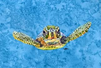 Caroline's Treasures 8653PLMT Turtle Coming at You Fabric Placemat, Large, Multicolor