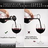 Rebenklar Wein Dekanter Rotwein mit Zubehör [Verfeinerter Weinausgiesser und Dekantierer] 1450 ML Wein-Karaffe wunderschönes Geschenk-Set Premium Decanter für Weinliebhaber Karaffen-Set - 4