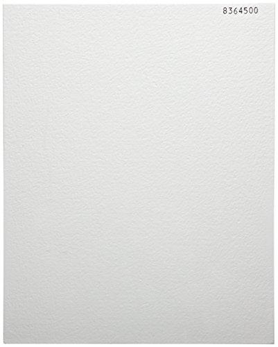 Whatman Borosilicate Glass Air Sampling Filter Sheet, Grade EPM 2000, 10' Length x 8' Width (Pack of 100)