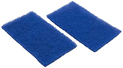 Hayward RCX70103PAK2 Spring Clean Up Filter Replacement for Tigershark and SharkVac Robotic Cleaners, Set of 2
