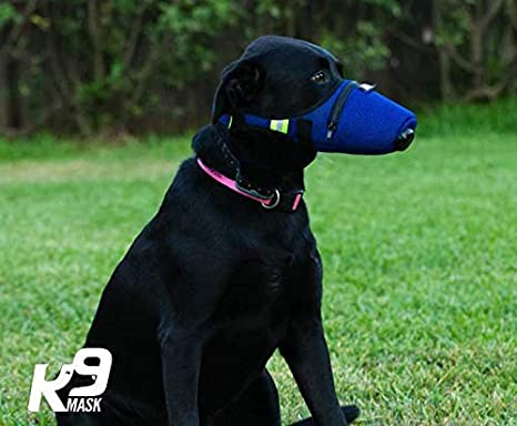 Blue K9 Mask Air Filter Mask for Dogs with Clean Breathe Premium Air Filter Refills