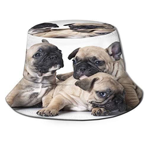 TTLUCKY Sombrero de Pesca,Retrato de Cachorro de Bulldog francés de un Mes,Senderismo para Hombres y Mujeres al Aire Libre Sombrero de Cubo Sombrero para el Sol