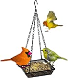 Hanging Bird Feeder Tray, Platform Metal Mesh Seed Tray for Bird Feeders, Outdoor Garden Decoration for Wild Backyard Attracting Birds