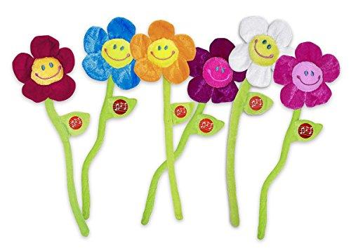 Singende Blume