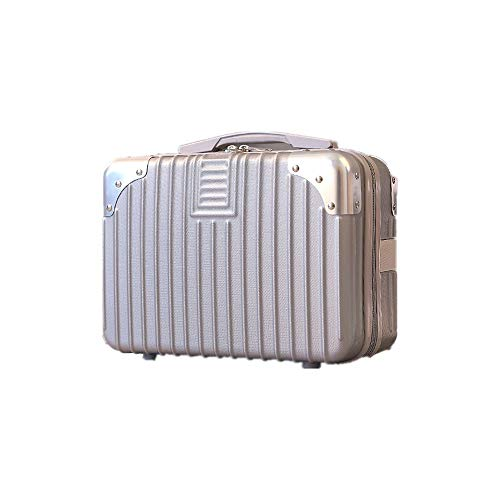ミニスーツケース メイクケーストランクケース ハンドバッグ キャリーバッグ ミニトランク 防水 大容量 軽量 かわいい 出張 旅行 機内持ち込み可 20L以内 (B63シルバー)