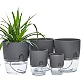 6/4.1/3.2 Inch Self Watering Planter Pots, 5 Pack African Violet Pots for Indoor Outdoor Windowsill Gardens, Self Aerating, High Drainage, Deep Reservoir(Gray)
