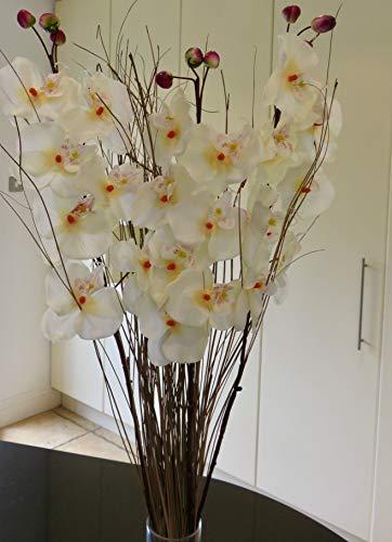 Link Products PEACH – Juego de 3 tallos de orquídea artificial (75 cm, listo para un jarrón