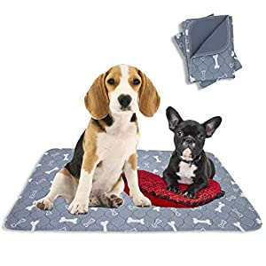 Washable Reusable Pee Pads for Dogs | XL (32″ x 42″) 2-Pack Grey | 100% Waterproof & Extra Absorbent | Large Non-Slip Puppy Pads | Pet Training & Housebreaking | Incontinence & Whelping Solution