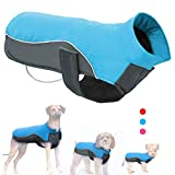 Didog Reflective Dog Winter Coat Sport Vest Jackets Snowsuit Apparel - 8 for Small Medium Large Dogs,Blue,5XL Size