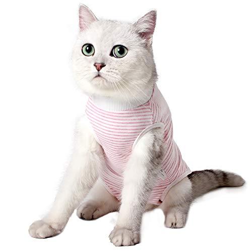 Dotoner Traje de recuperación Profesional para Gatos, Gata Camiseta de recuperación quirúrgica para heridas Abdominales Vendas Cono Cuello en Forma Alternativo(Rosa,l)