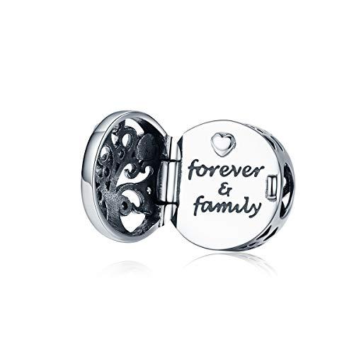 Bijoux Blu familie collectie Open ronde bedeltje voor vrouwen zilveren bedeltjes armband graveren moed woorden bedeltjes ontwerp