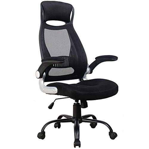 OWLN Ergonomic High Back Mesh Office Chair with Adjustable Headrest and Armrest Desk Chair