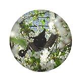 Zemivs Set di 4 tovagliette da Pranzo Rotonde Cat And Flowers of The Blossom Cherry Tovagliette da caffè Tovaglietta Impermeabile 15,4 Pollici Facile da Pulire per la Cucina Tavolo da Pranzo F
