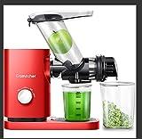 AMZCHEF Juicer Machines Slow Juicer Slow Masticating Juicer Cold Press Juicer Vegetable&Fruit Extractor Reverse Function Quiet 3' Feed Chute|Juice Jug&Brush BPA-Free 9X10X20'
