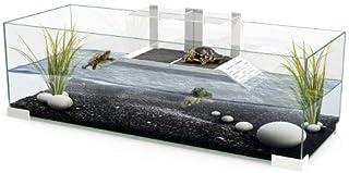 Amazon.es: acuario para tortugas