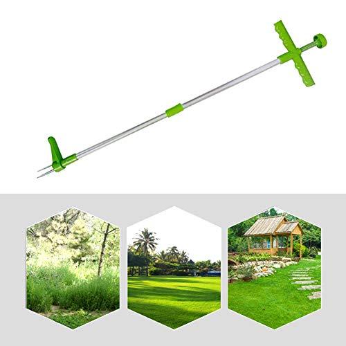 QASIMOF - Extractor de malas hierbas, telescópico, herramienta de desherbado, manual de arrancador de malas hierbas, herramienta de jardinería para césped, extractor de diente de león sin tors