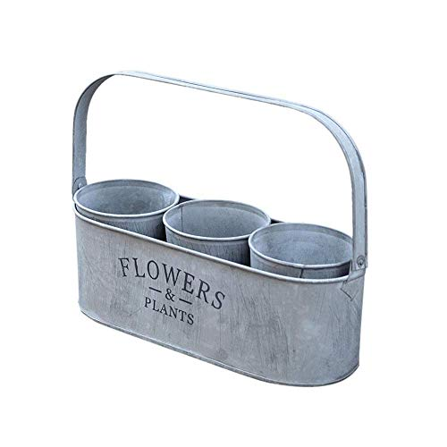 YUE Maceta de hojalata con asa, suculento Cubo de Flores pequeñas, Canasta de Flores de Tubo de Flores, Soporte de Flores, macetas Decoración Creativa para Balcones