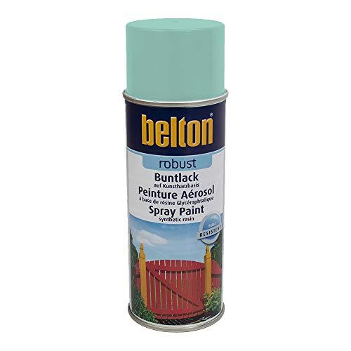 Unbekannt Kwasny Belton Robust Buntlack Lackspray Lack Spray Spraylack Mintgruen Hochglanz 400 ml