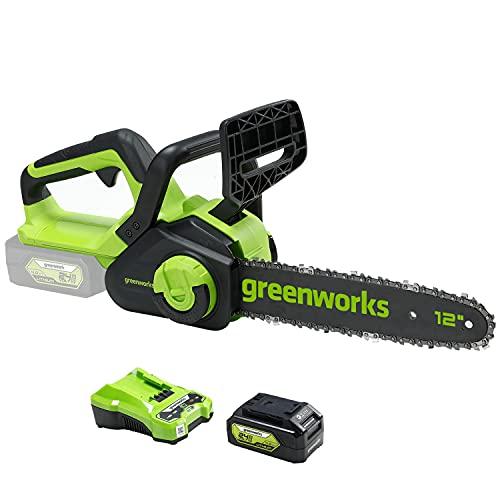Greenworks G24CS30 Motosierra eléctrica con batería, Li-Ion 24V velocidad de corte 7,8m/s...