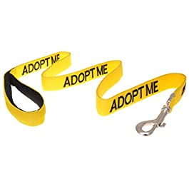ADOPT ME (I Need A New Home) Yellow Colour Coded 60cm 1.2m 1.8m Neoprene Padded Handle Dog Leads PREVENTS Accidents By Warning Others Of Your Dog In Advance