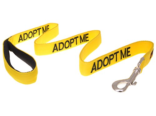 Dexil Limited Adopt ME Yellow Color Coded 2 4 6 Foot Padded Dog Leash (New Home Needed) Donate to Your Local Charity (4 Foot Leash)