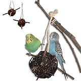 Vogelgaleria® 2er Set prall mit Heu gefüllte Weidenkugel 10cm zum knabbern und Klettern für Vögel   Bestes Wellensittich Spielzeug für den Käfig   Ideales Knabberspielzeug Vogelzubehör handgemacht