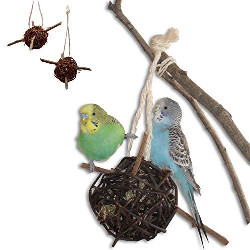 Vogelgaleria® 2er Set prall mit Heu gefüllte Weidenkugel 10cm zum knabbern und Klettern für Vögel | Bestes Wellensittich Spielzeug für den Käfig | Ideales Knabberspielzeug Vogelzubehör handgemacht