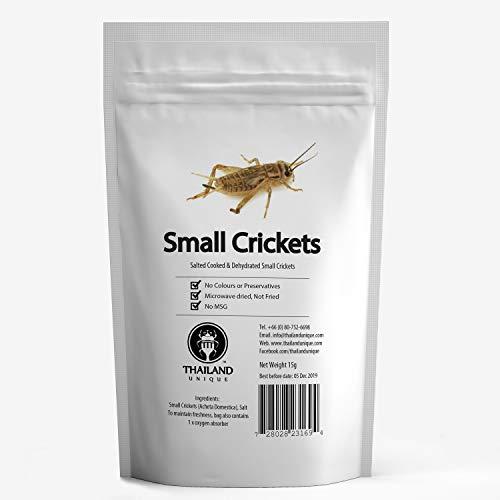 食用 ヨーロッパイエコオロギ15g(Small Crickets15g) 昆虫食