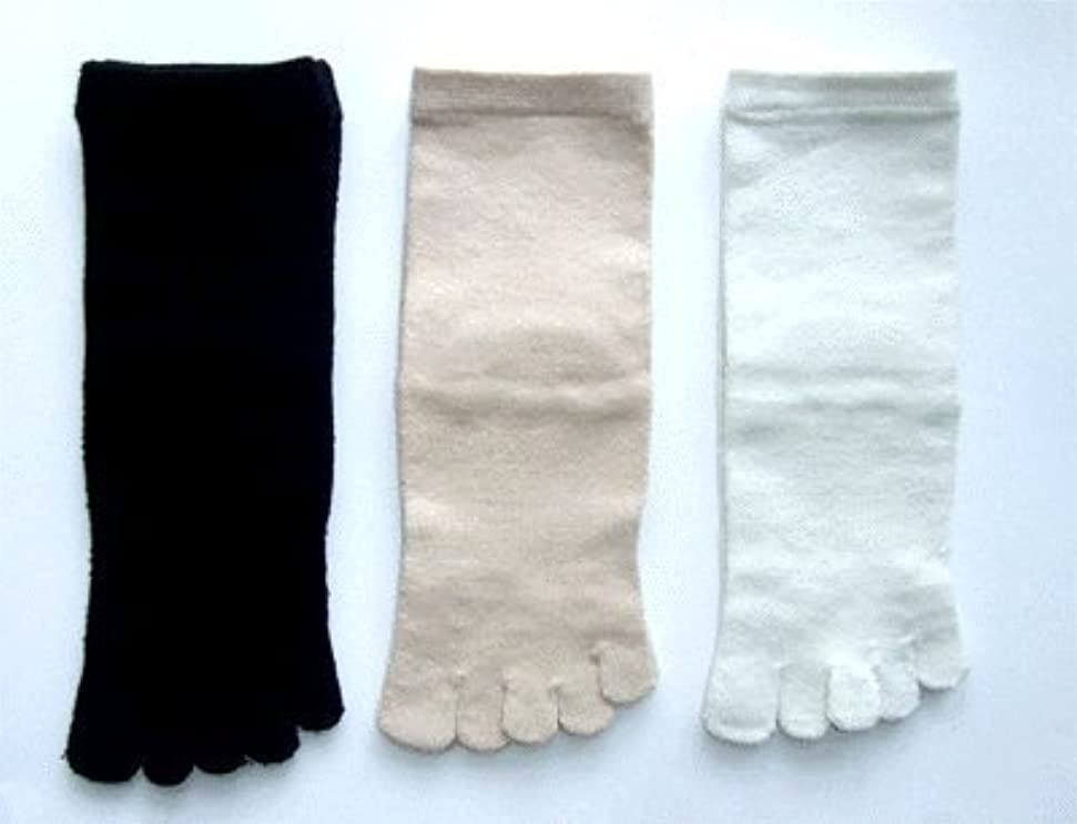 汚物フレッシュ一般的に言えば日本製 こだわりのシルク 5本指ソックス レディース 22~24cm 3足組