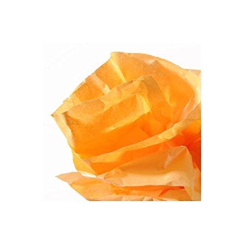Canson 200992661 - Rollo de papel de seda 0.5 x 5 m, color naranja