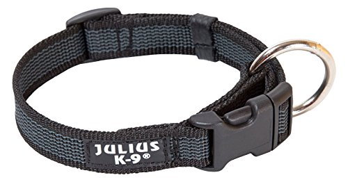Julius-K9 Collar Color & Gray, 25 mm 39/65 cm, Negro/Gris