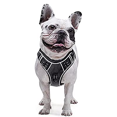 EAVSOW Dog Harness No Pull, Pet Vest Harness with 2 Metal Rings and Handle, Adjustable Reflective Breathable Oxford Soft Vest, Easy Control Front Clip Harness for Small Dogs