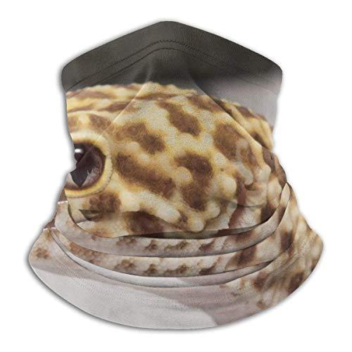 Traveler Online-geckos-leopard-gecko-radar-bell-albino-200 Capuche cagoule élégante en molleton