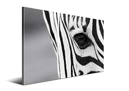 DON LETRA El Ojo de Cebra - Cuadro de 80 x 50 cm para Decoración de Salón y Dormitorio, Lienzo 100% Poliéster y Bastidor de Madera, Blanco y Negro, LZ-013