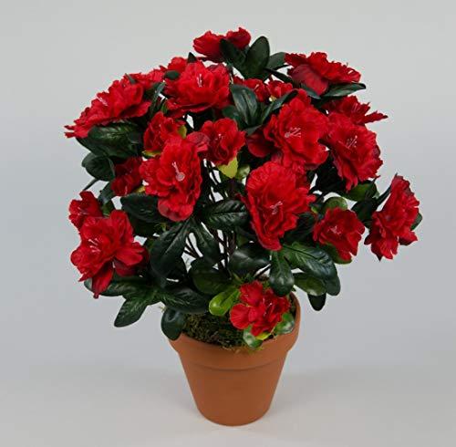 Seidenblumen Roß Azalee 34cm rot im Topf LA Kunstpflanzen Kunstblumen künstliche Blumen Pflanzen Azaleenbusch