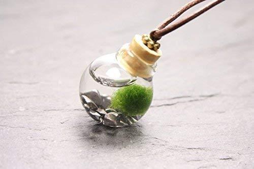 Moosi Unterwasserwelt Kette Marimo echtes Borosilikatglas
