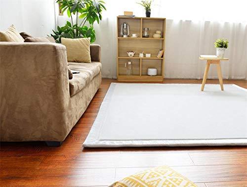 OHHCO Alfombra de refrigeración para sala de estar, dormitorio, ventana, terciopelo coral, espuma viscoelástica, color gris, 200 x 260 cm, para sala de estar (tamaño: 200 x 220 cm)