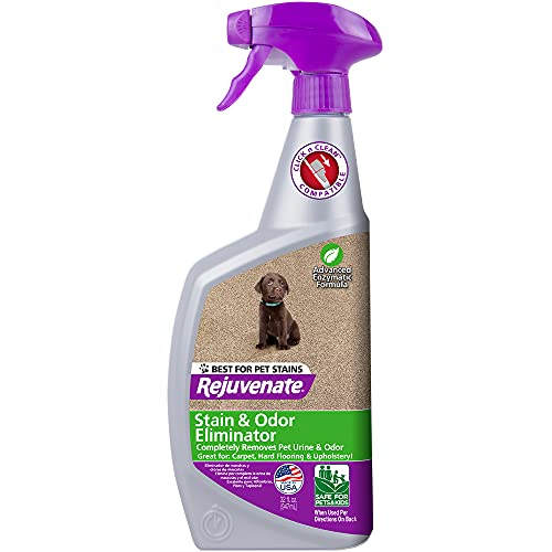Rejuvenate Carpet & Upholstery Spot Remover Stain Cleaner Bio-Enzymatic Professional Strength Urine Remover Dog Cat Stain and Pet Odor Eliminator Ready-to-Use