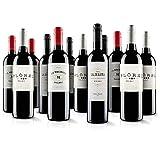 Premium Malbec Red Wine Selection - 12 Bottles (