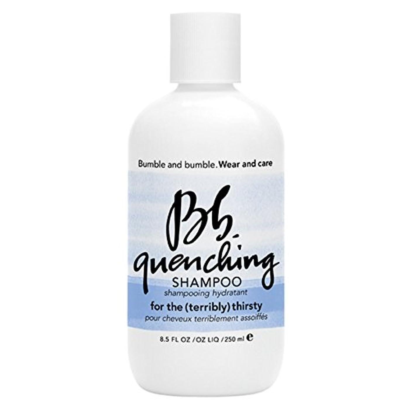 どう?インシュレータキモいバンブルアンドバンブル急冷シャンプー250ミリリットル (Bumble and bumble) (x6) - Bumble and bumble Quenching Shampoo 250ml (Pack of 6) [並行輸入品]