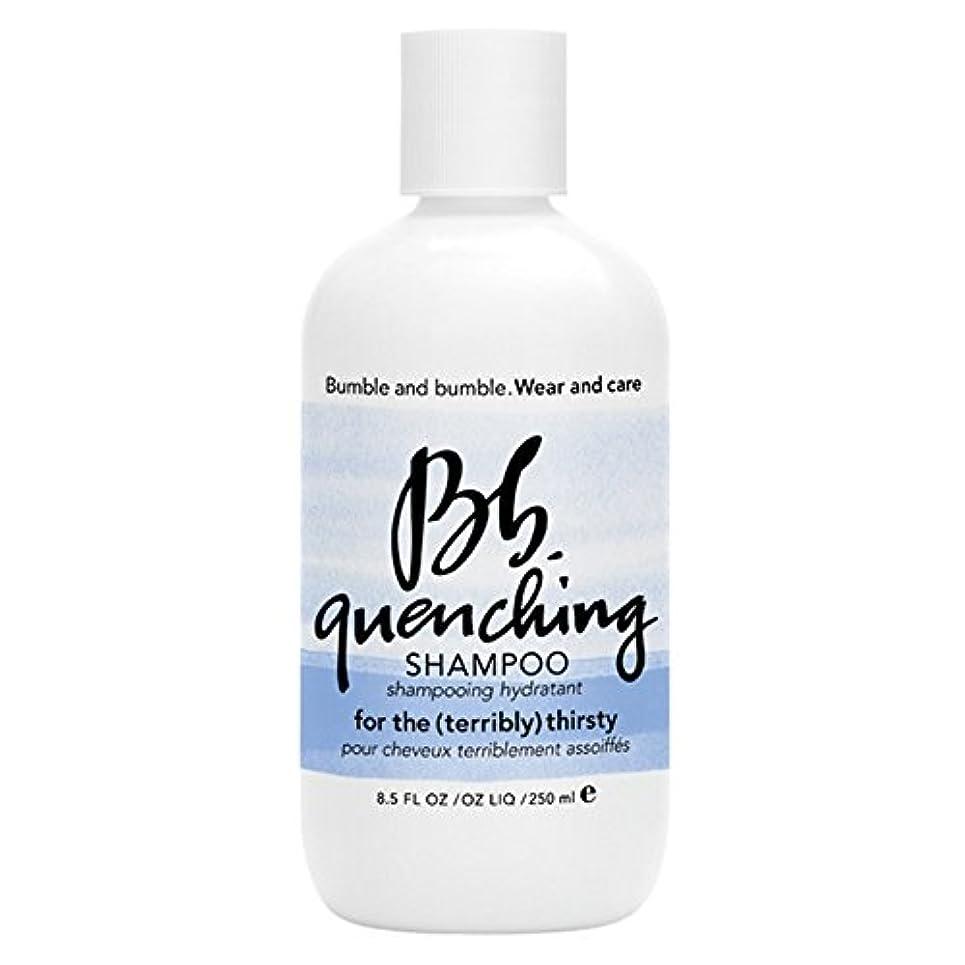 ハッピーリーク手荷物バンブルアンドバンブル急冷シャンプー250ミリリットル (Bumble and bumble) - Bumble and bumble Quenching Shampoo 250ml [並行輸入品]