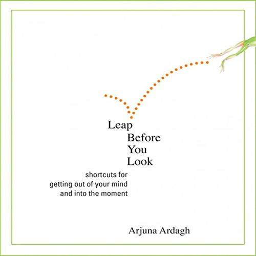 Leap Before You Look audiobook cover art