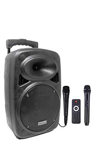 DYNASONIC - Dynapro - Altavoz Inalámbrico Sistema Audio Profesional Megafonia Portátil | Lector USB Bluetooth Radio FM y Micrófonos, Color Negro (DYNAPRO 8)