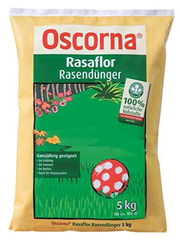 Rasaflor Rasendünger 5 kg