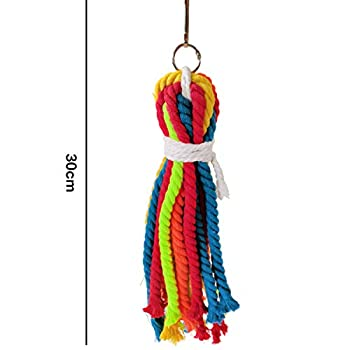 6 pièces jouets de balançoire pour oiseaux jouets de cage de perroquet jouet de butinage pour oiseaux jouet de butin pour perroquet porte-légumes à fruits suspendu jouet pour petits oiseaux moyens